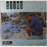 Sting / Love Is The Seventh Wave