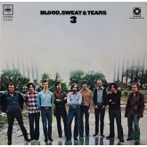 Blood Sweat and Tears / Blood, Sweat And Tears 3