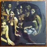 Jimi Hendrix Experience / Electric Ladyland (2LP)